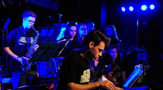 Unsere Musiker in Bestform beim Sommerkonzert