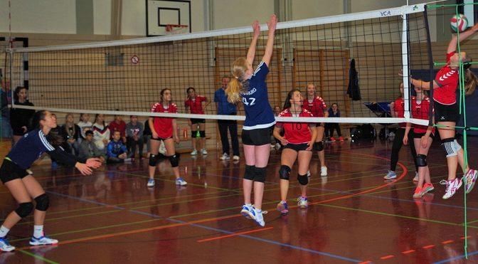 Unsere Volleyballteams in Topform