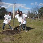 Lila, Virginia und Florina mit ihrem Baum